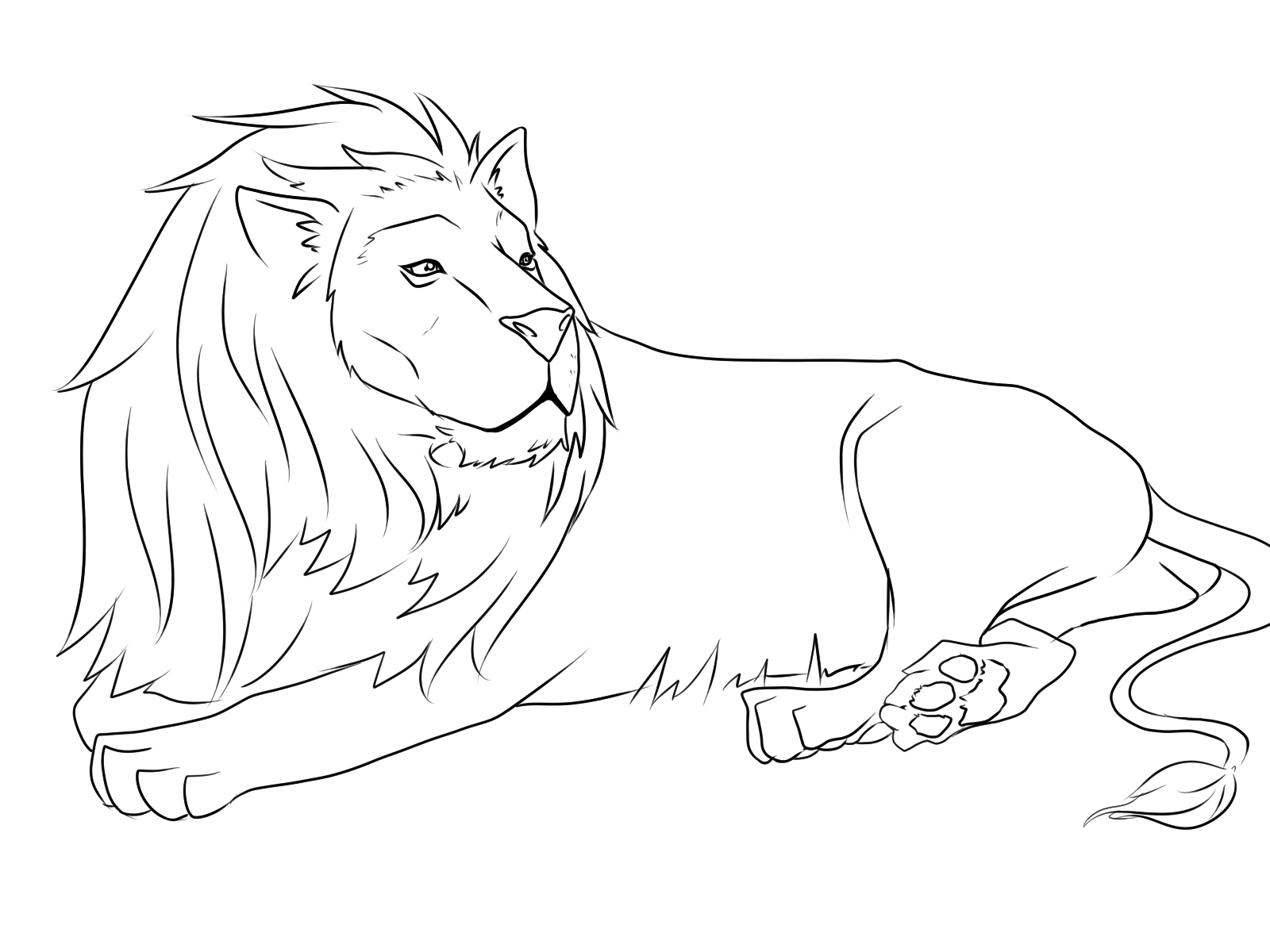 lion coloring sheets lion coloring pages free download on clipartmag sheets coloring lion