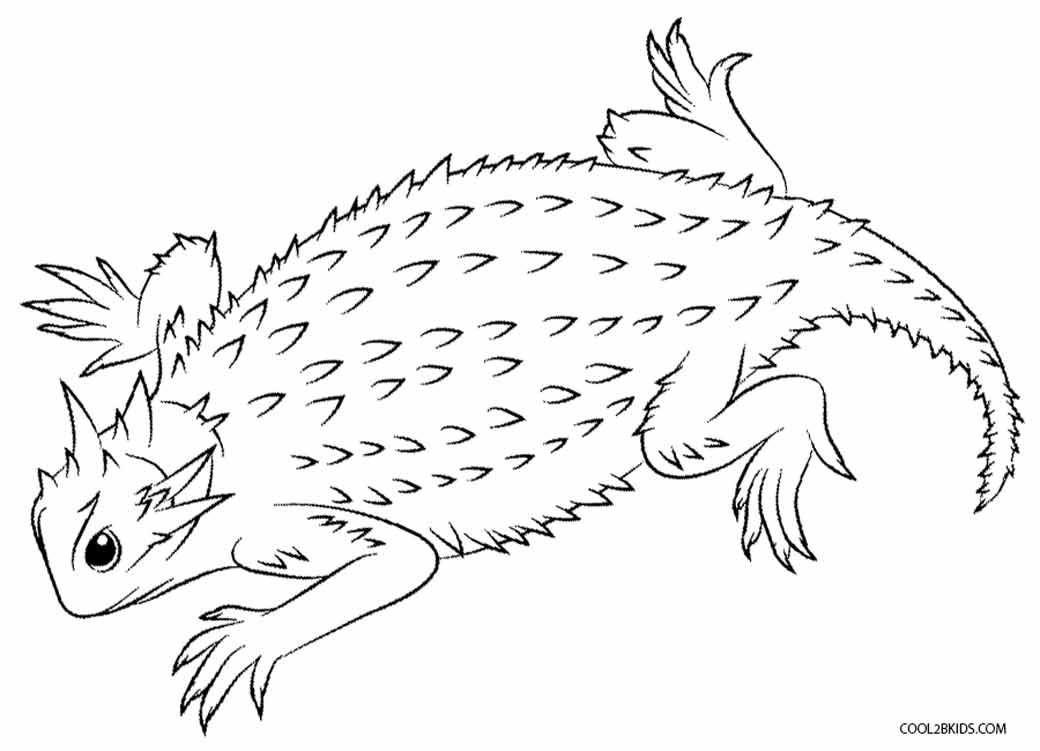 lizard coloring page free lizard coloring pages lizard coloring page