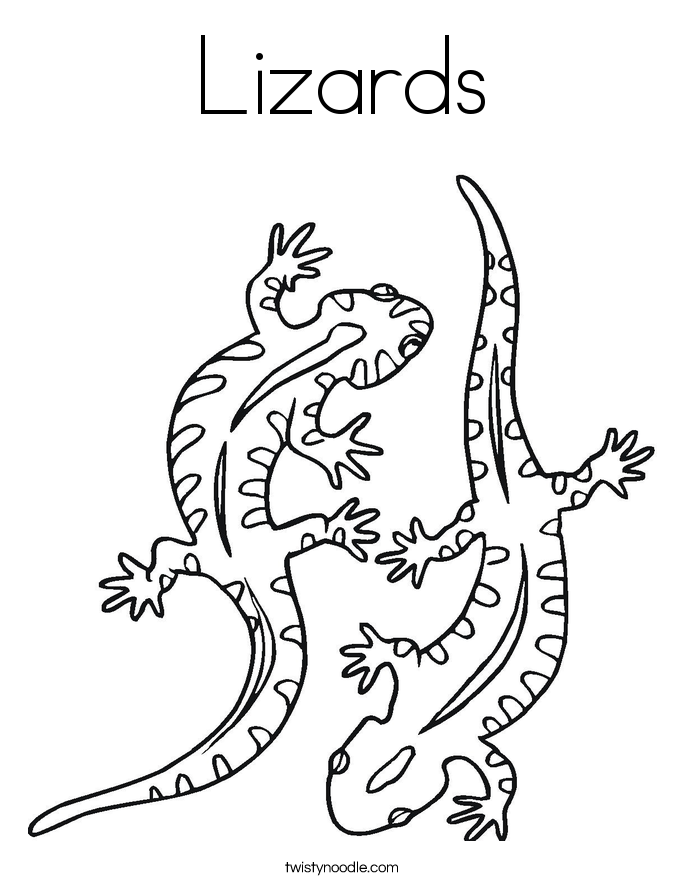 lizard coloring page free lizard coloring pages page coloring lizard