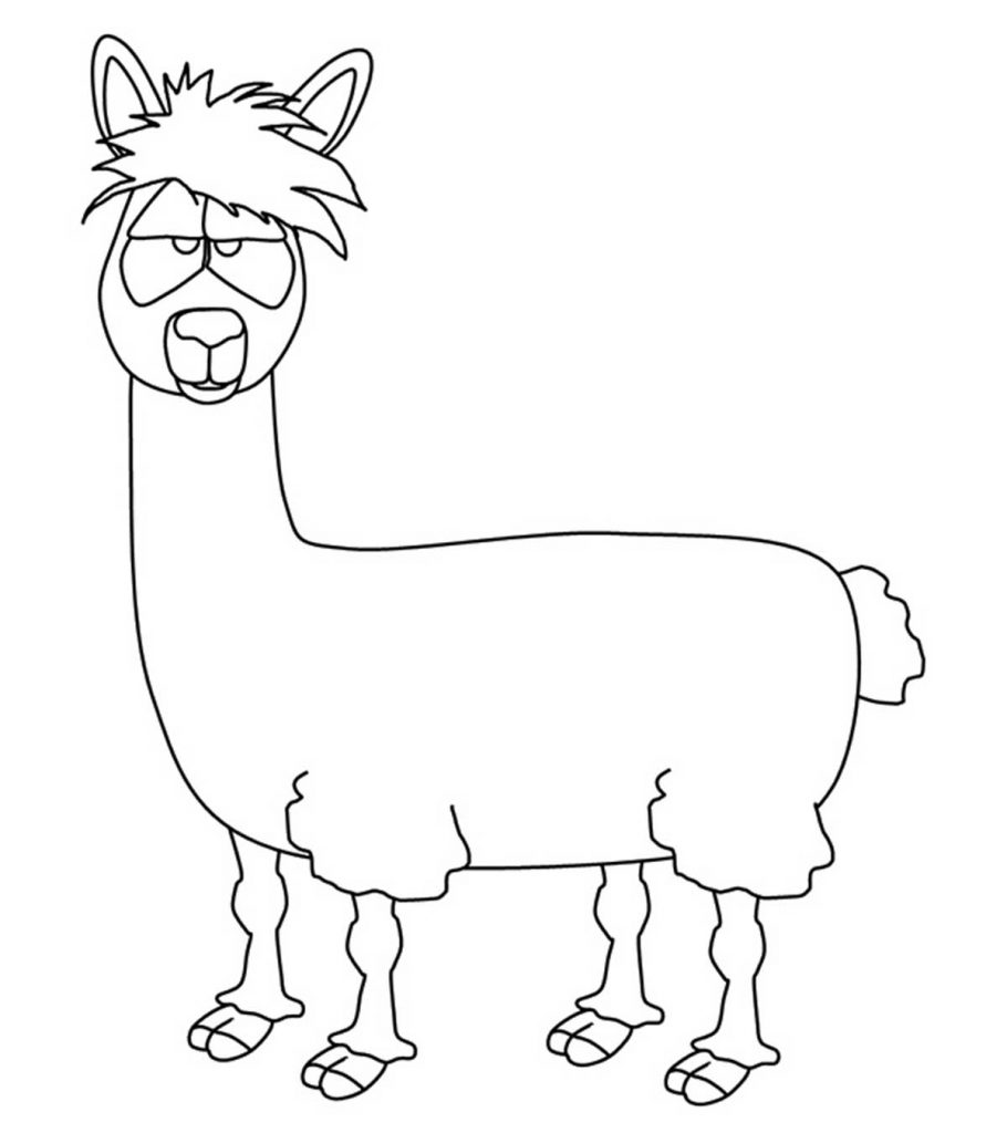 llama llama coloring page interesting facts llama brother camel who likes to spit page llama llama coloring