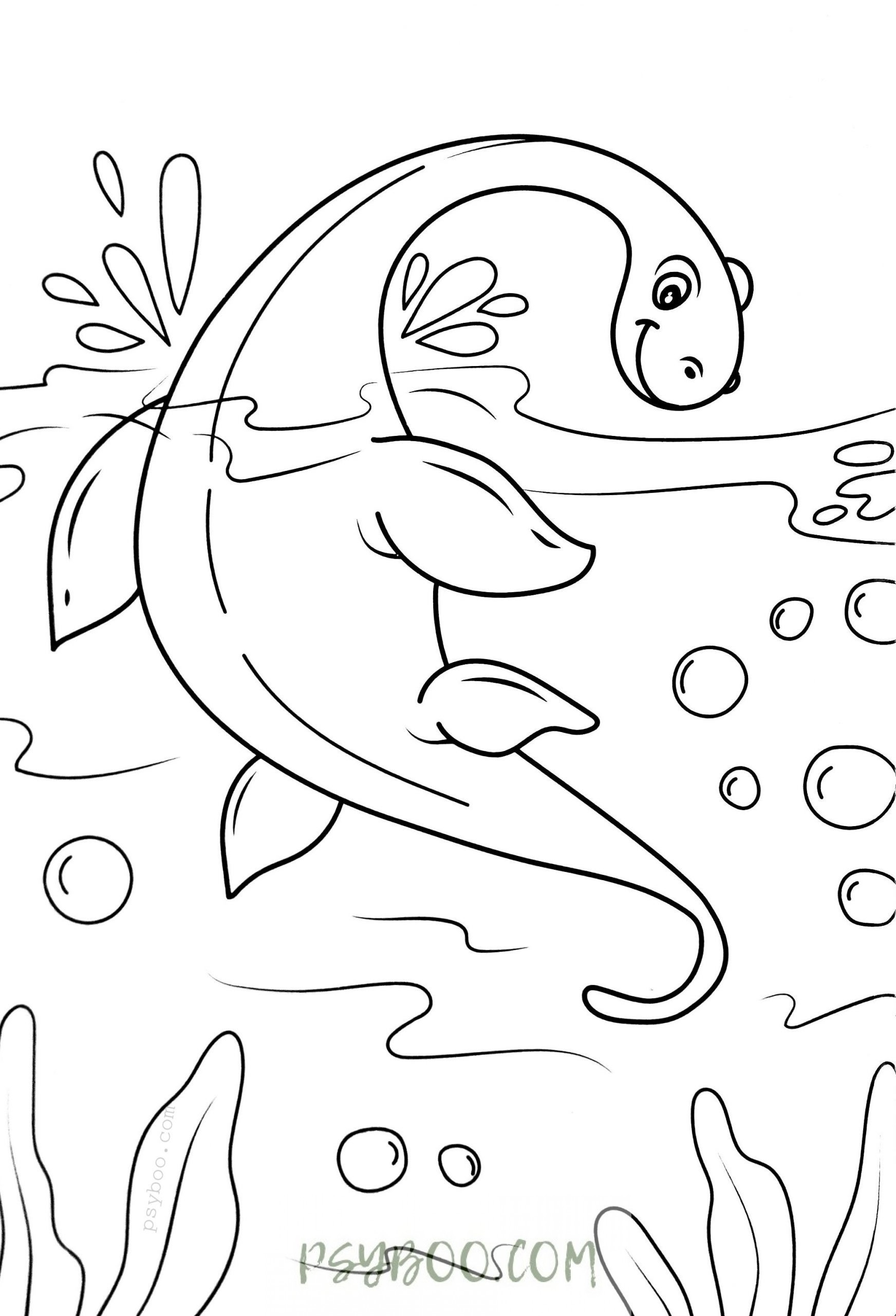 loch ness monster coloring pages smalltalkwitht download loch ness monster coloring pages png loch coloring monster ness pages