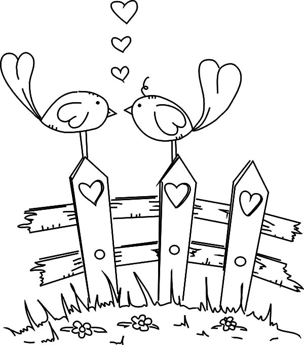 love birds coloring pages coloring pages love birds at getcoloringscom free pages birds coloring love