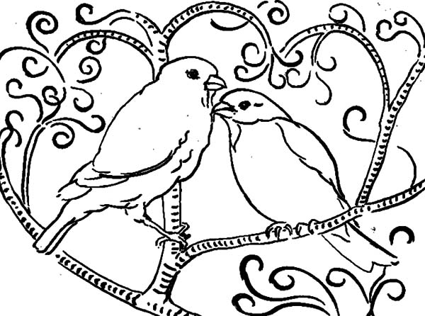 love birds coloring pages love bird drawing at getdrawings free download love coloring birds pages