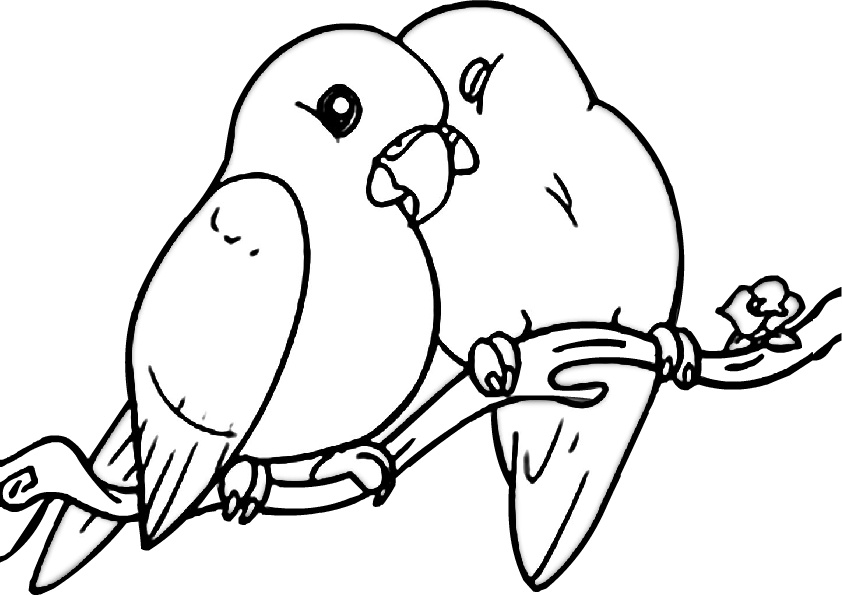 love birds coloring pages love birds coloring pages coloring home pages birds love coloring