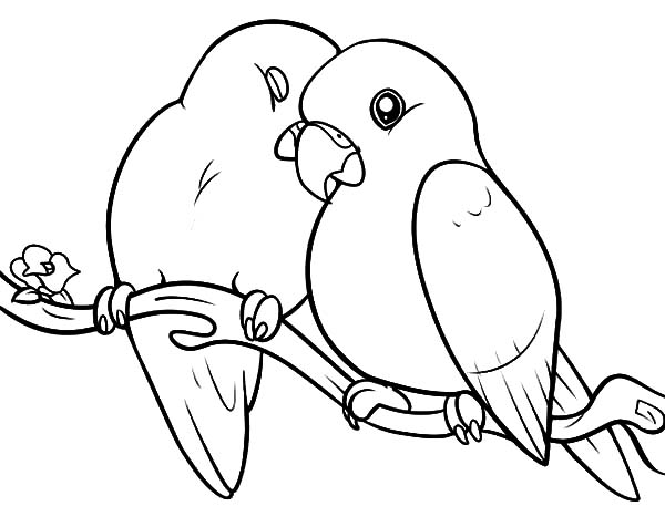 love birds coloring pages love birds with hearts coloring page free printable coloring love birds pages