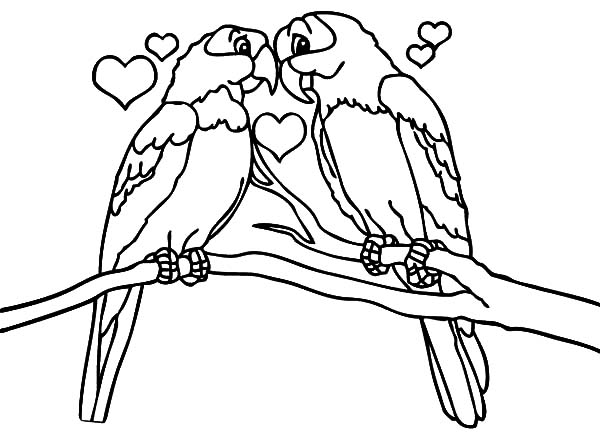 love birds coloring pages lovebirdsadultcoloringpagefreeprintable love birds coloring pages
