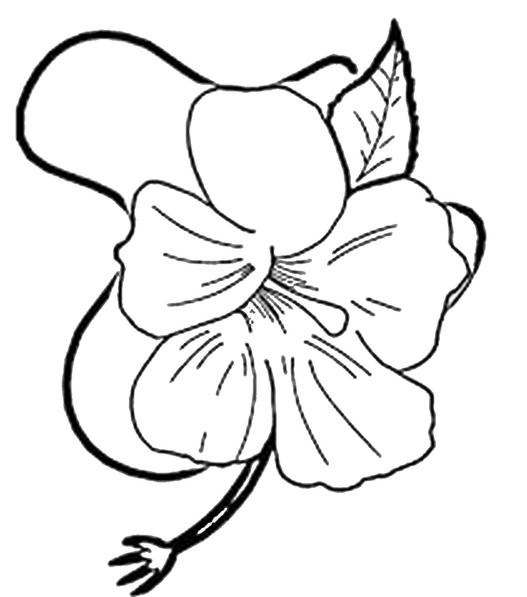luau coloring pages 17 best hawaii luau images on pinterest coloring books pages coloring luau