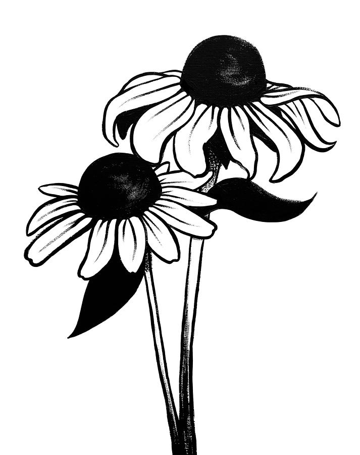 maryland state flower library of black eyed susan png download black and white state flower maryland