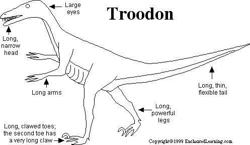 meat eating dinosaur coloring pages troodon printout zoomdinosaurscom dinosaur coloring meat eating pages