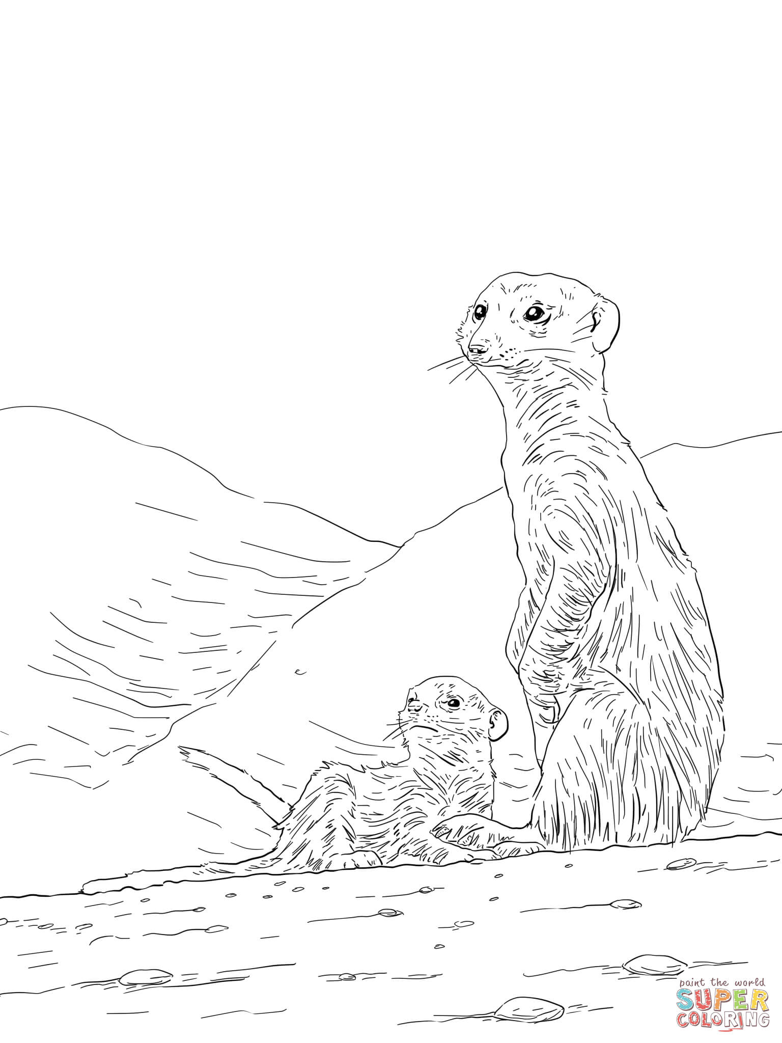 meerkat pictures to colour animal coloring pages momjunction pictures colour to meerkat