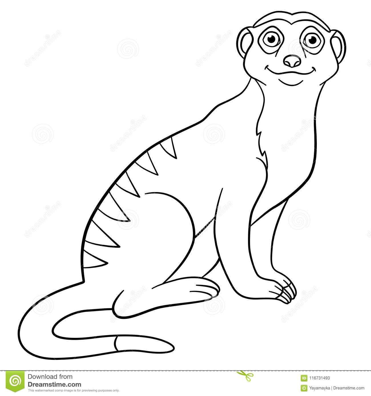 meerkat pictures to colour coloring pages little cute meerkat smiles stock vector colour pictures meerkat to