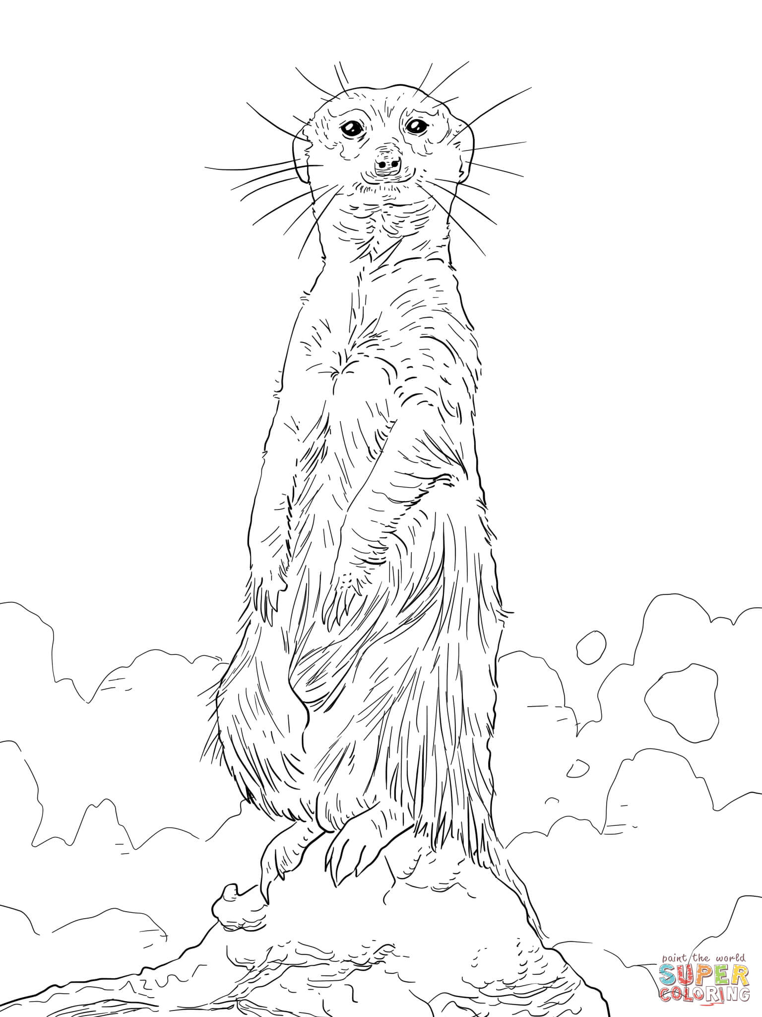 meerkat pictures to colour printable meerkat coloring page free pdf download at http colour meerkat pictures to