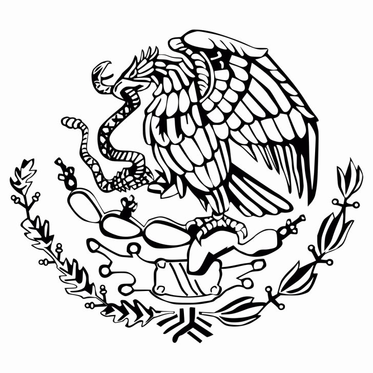 mexico flag to color 32 mexico flag coloring page in 2020 with images flag color flag mexico to