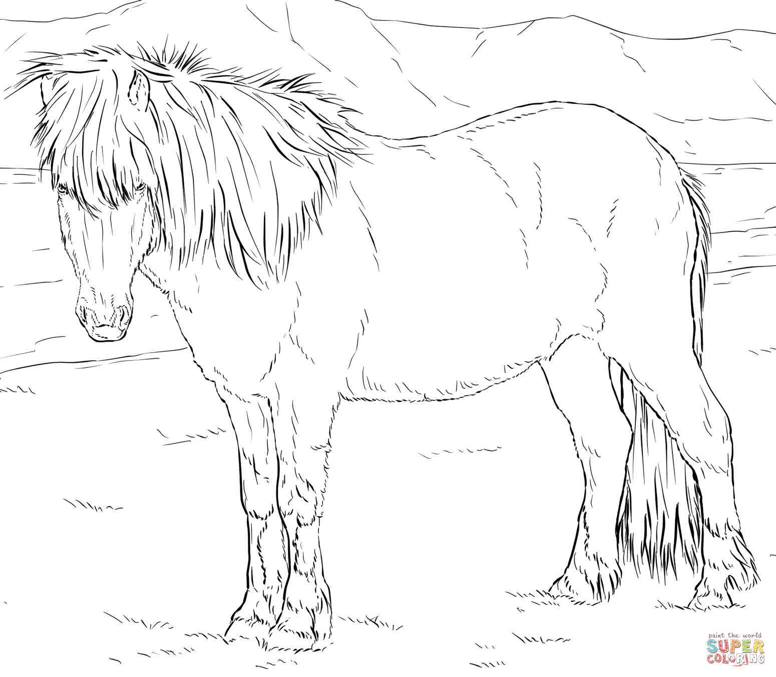 miniature horse coloring pages gypsy horse coloring pages free printable coloring sheets pages miniature coloring horse
