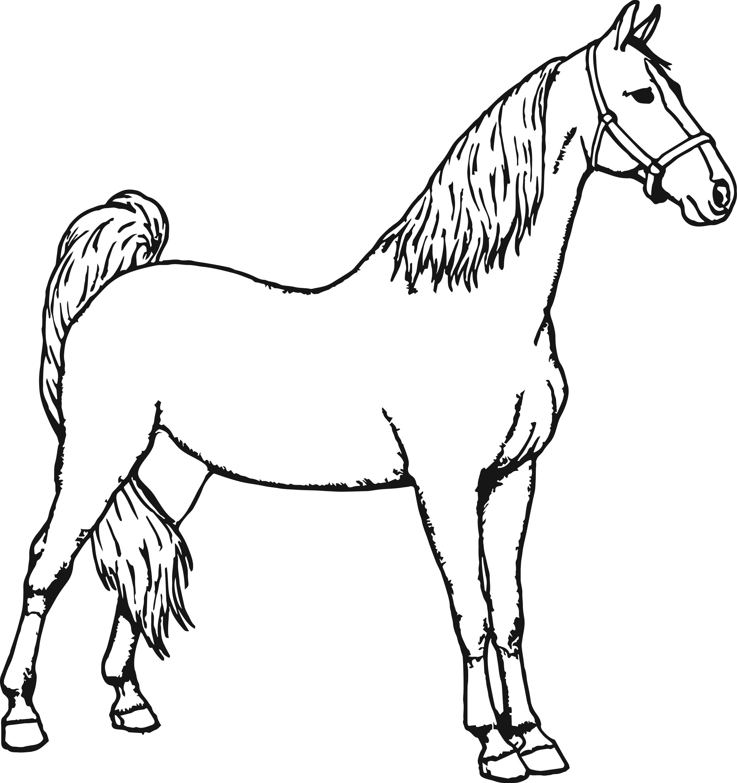 miniature horse coloring pages miniature horse coloring pages at getcoloringscom free miniature horse pages coloring