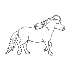miniature horse coloring pages miniature horse coloring pages miniature horse coloring pages