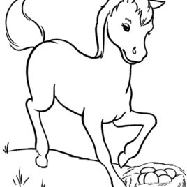 miniature horse coloring pages miniature horse coloring pages miniature horse pages coloring