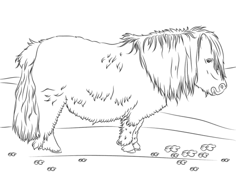 miniature horse coloring pages miniature horse coloring pages pages horse coloring miniature