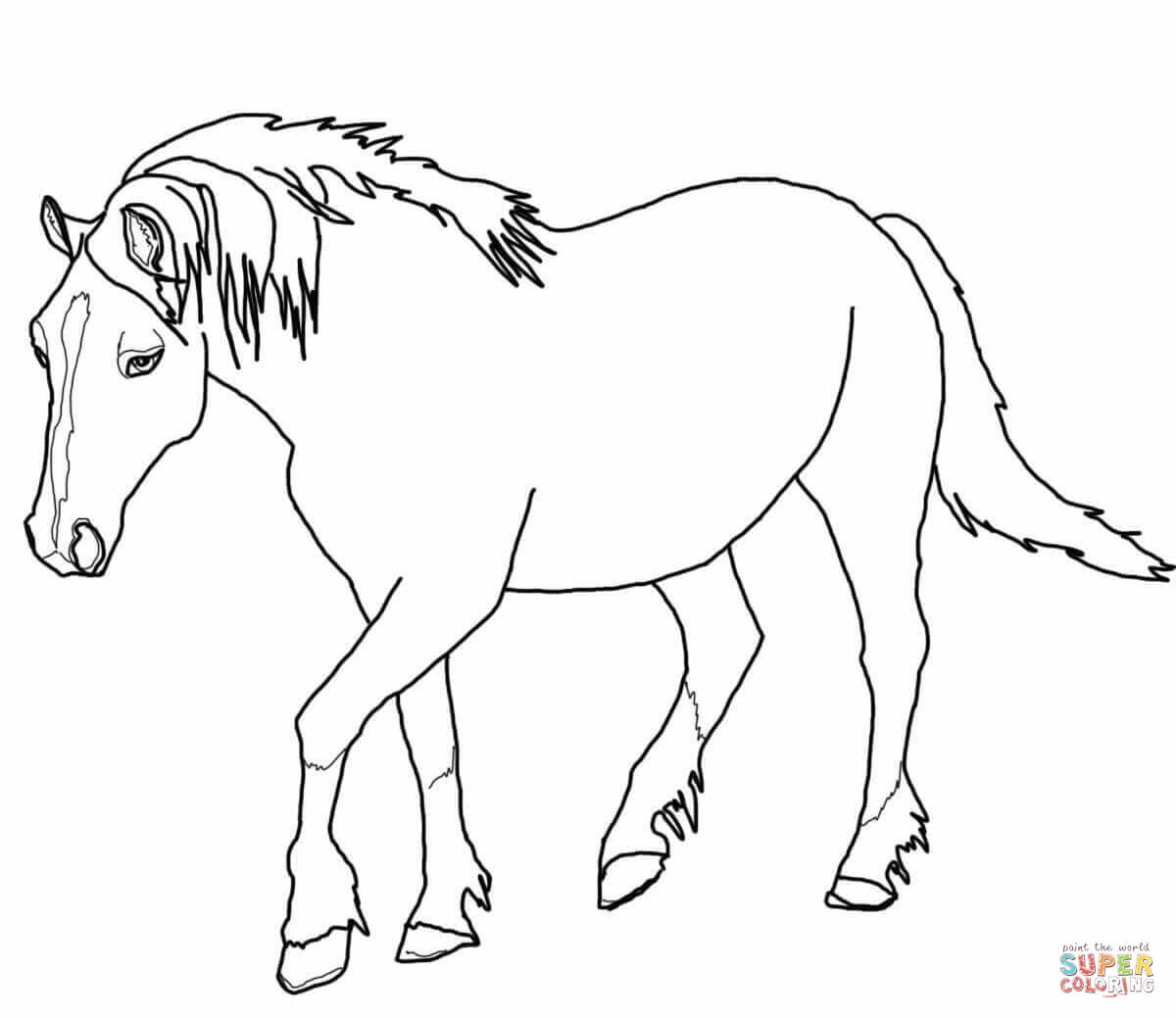 miniature horse coloring pages running arabian horse coloring page free printable coloring pages miniature horse