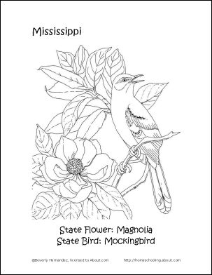 mississippi state flower mississippi state flower coloring page thousand of the state mississippi flower