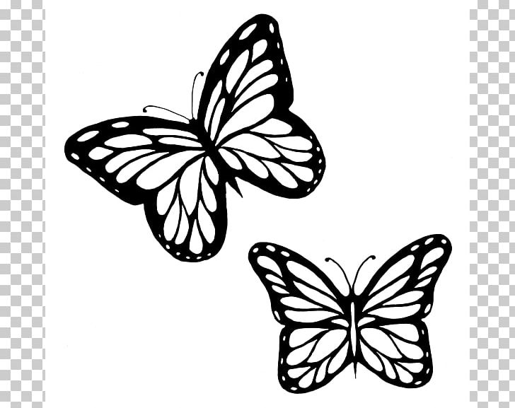 monarch butterfly coloring butterfly coloring pages butterfly tattoo stencil coloring butterfly monarch