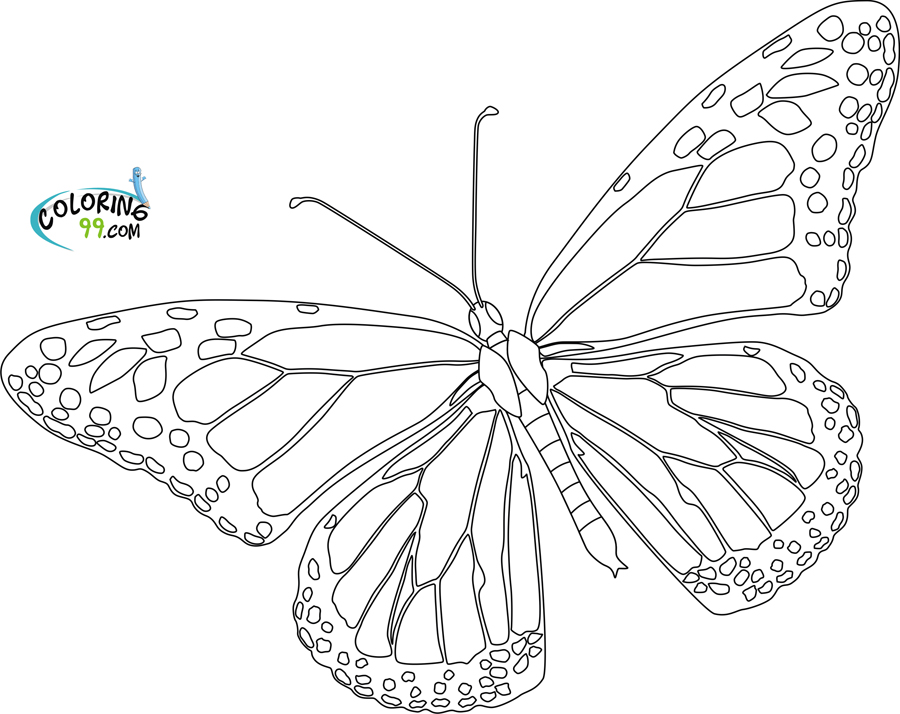 monarch butterfly coloring page butterfly coloring pages team colors monarch butterfly coloring page