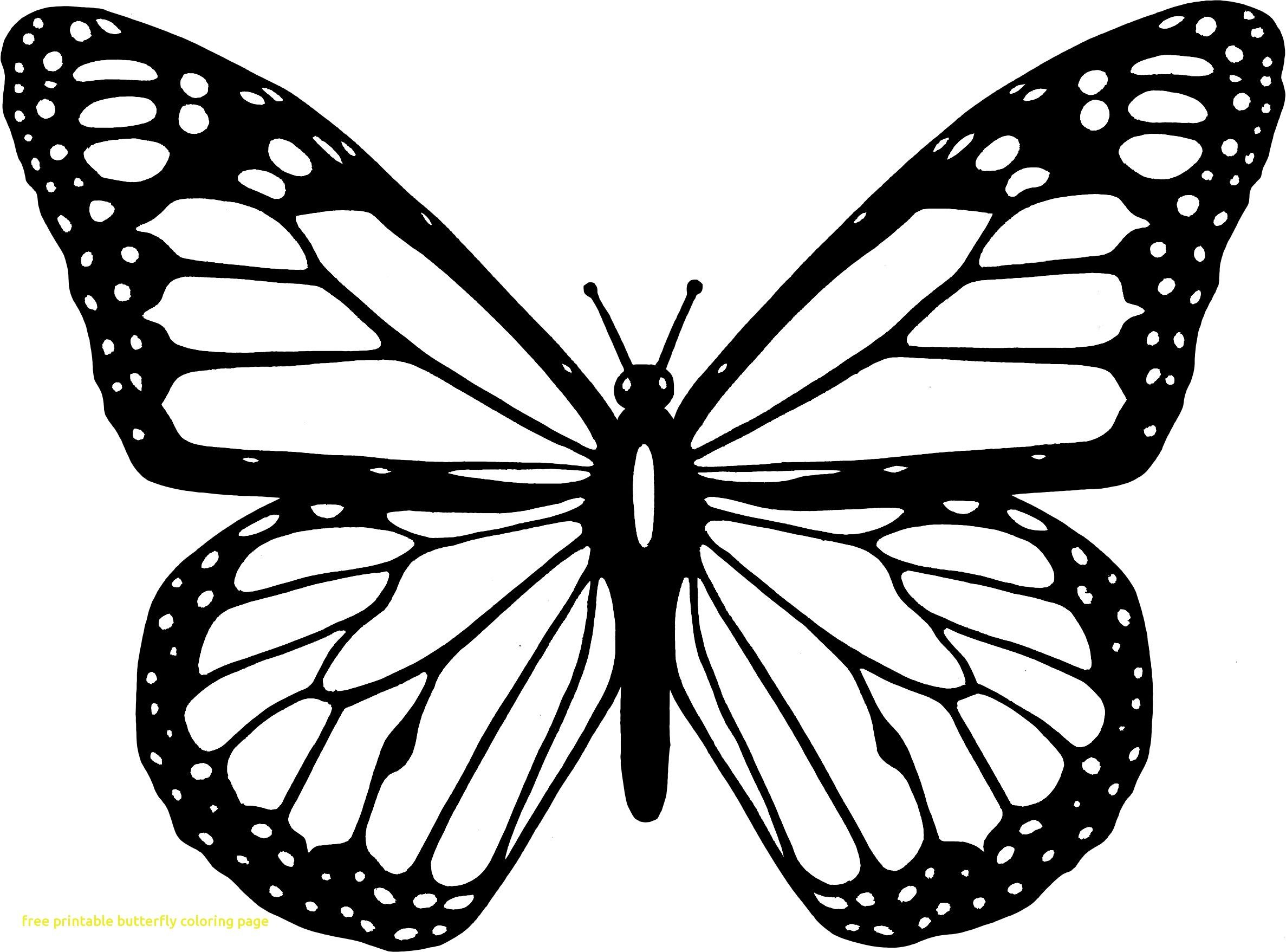 monarch butterfly coloring page coloring page of butterfly new easily colouring pages coloring monarch butterfly page