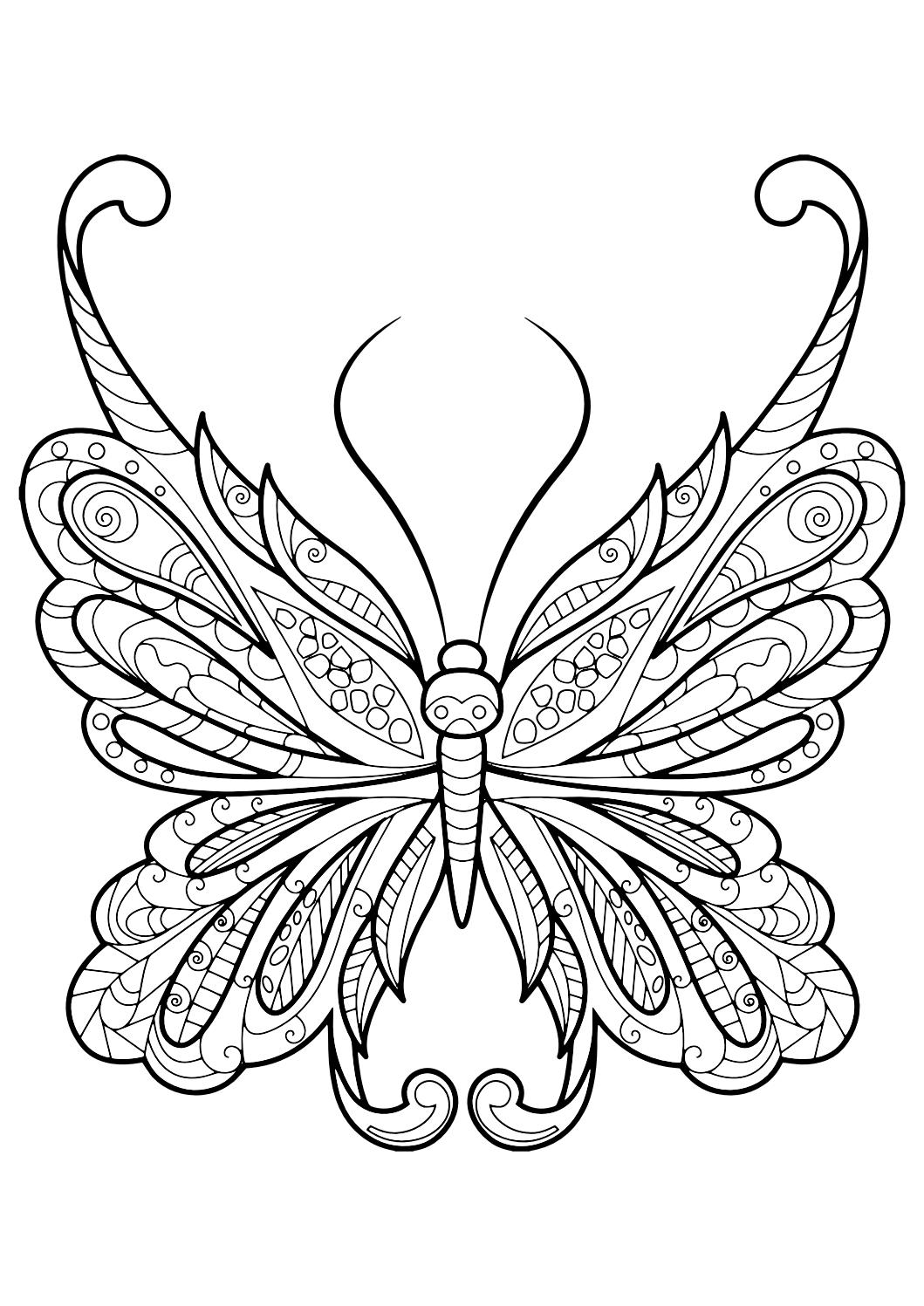 monarch butterfly coloring page monarch butterfly coloring pages to print free coloring coloring page monarch butterfly