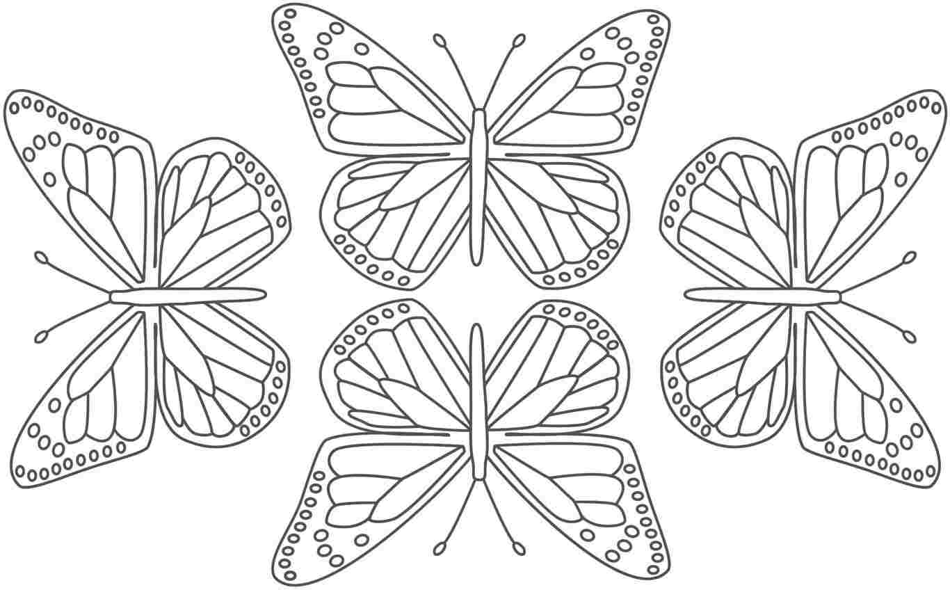 monarch butterfly coloring page printable butterfly coloring pages for kids cool2bkids page butterfly monarch coloring