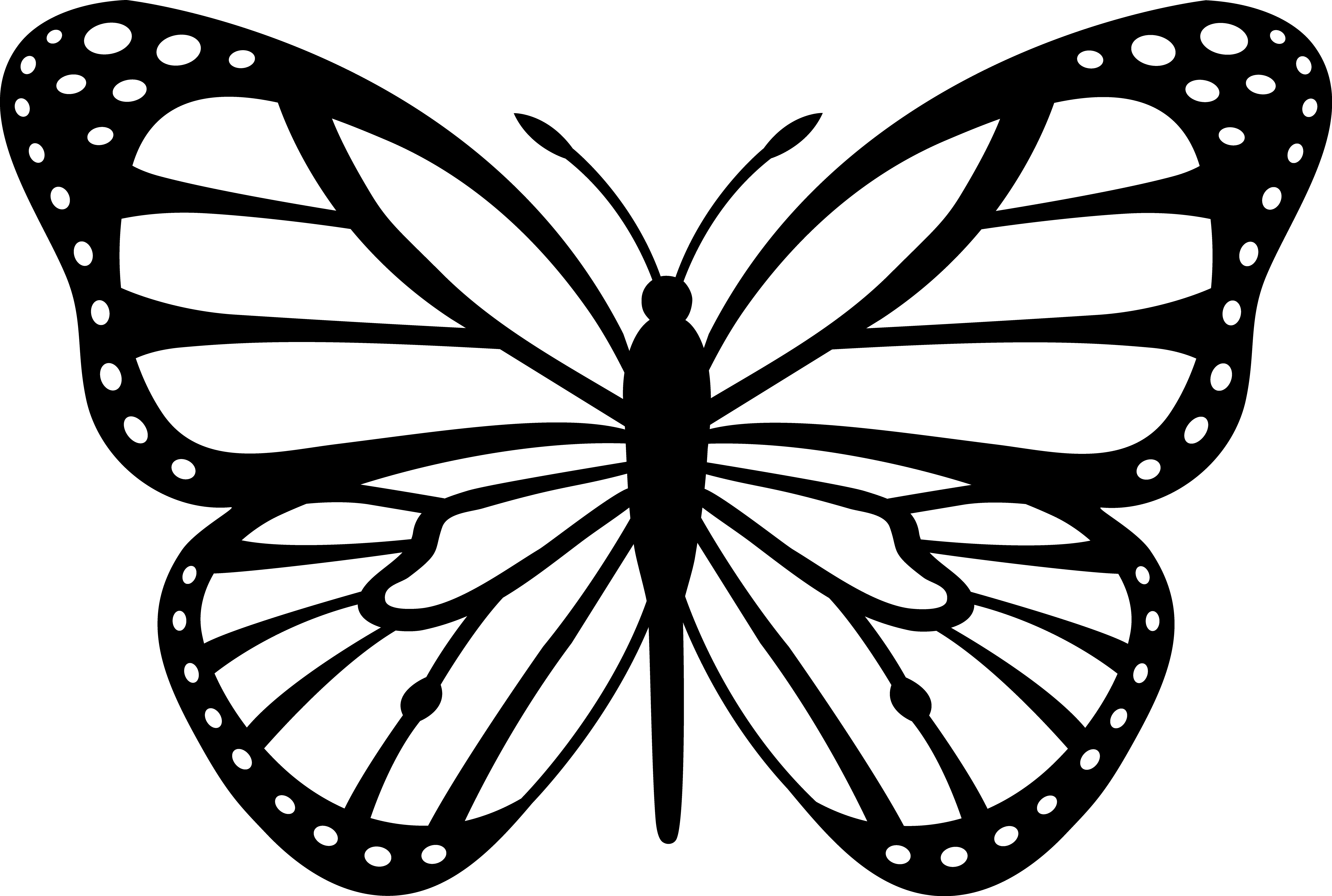 monarch butterfly coloring printable butterfly coloring pages for kids cool2bkids butterfly coloring monarch