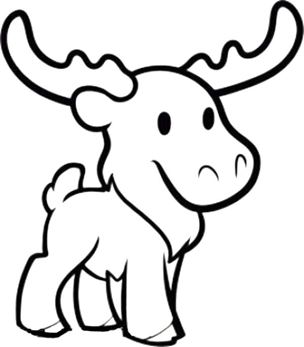 moose coloring funny moose coloring page download print online moose coloring