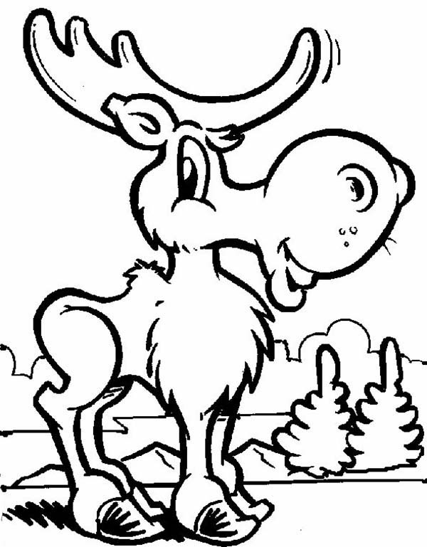 moose coloring page printable moose coloring pages for kids cool2bkids page moose coloring
