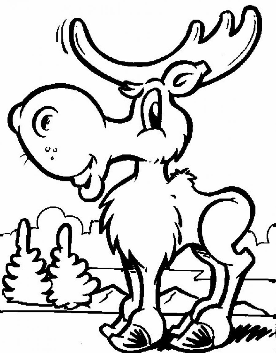moose coloring pages free moose coloring pages coloring moose pages