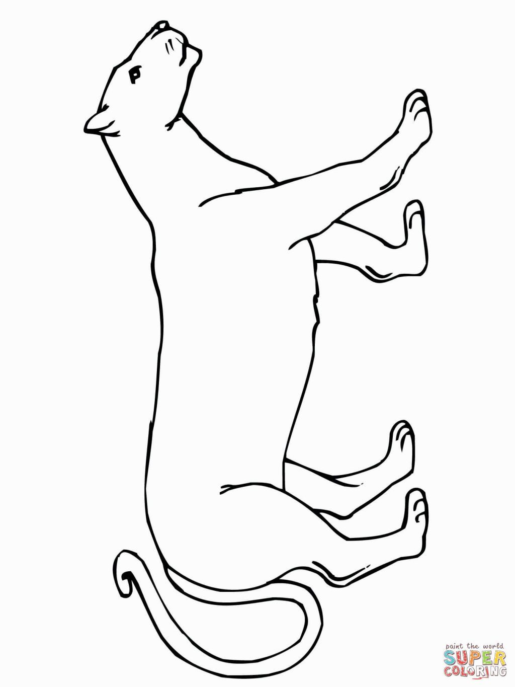 mountain lion coloring pages mountain lion coloring page youngandtaecom in 2020 pages lion coloring mountain