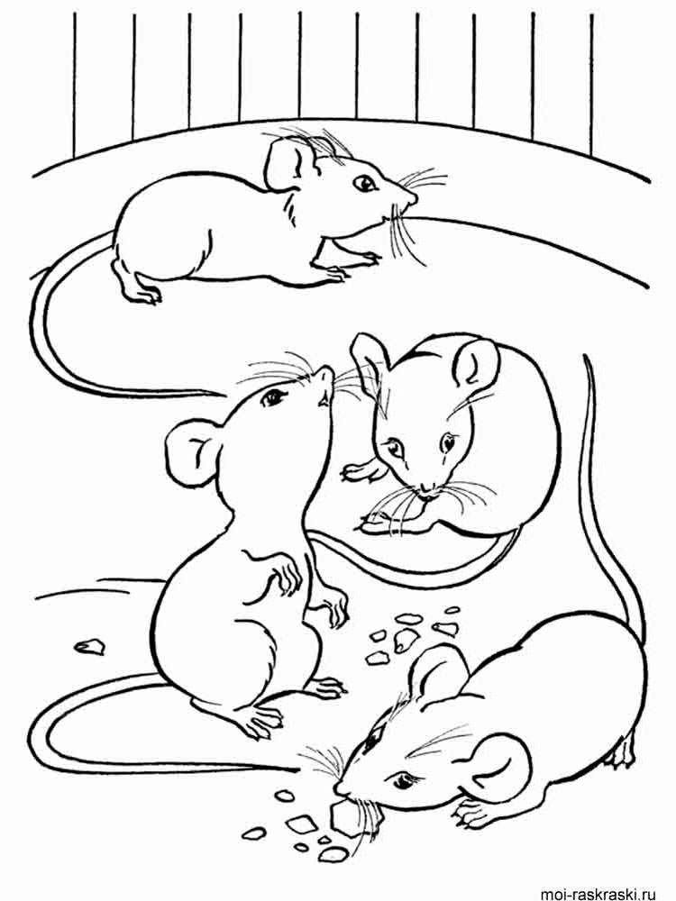 mouse coloring page free printable mouse coloring pages for kids page coloring mouse