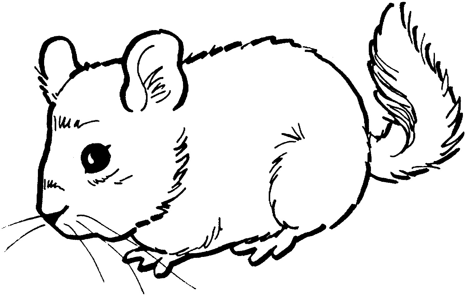 mouse coloring page mouse coloring page animal coloring page picgifscom coloring mouse page