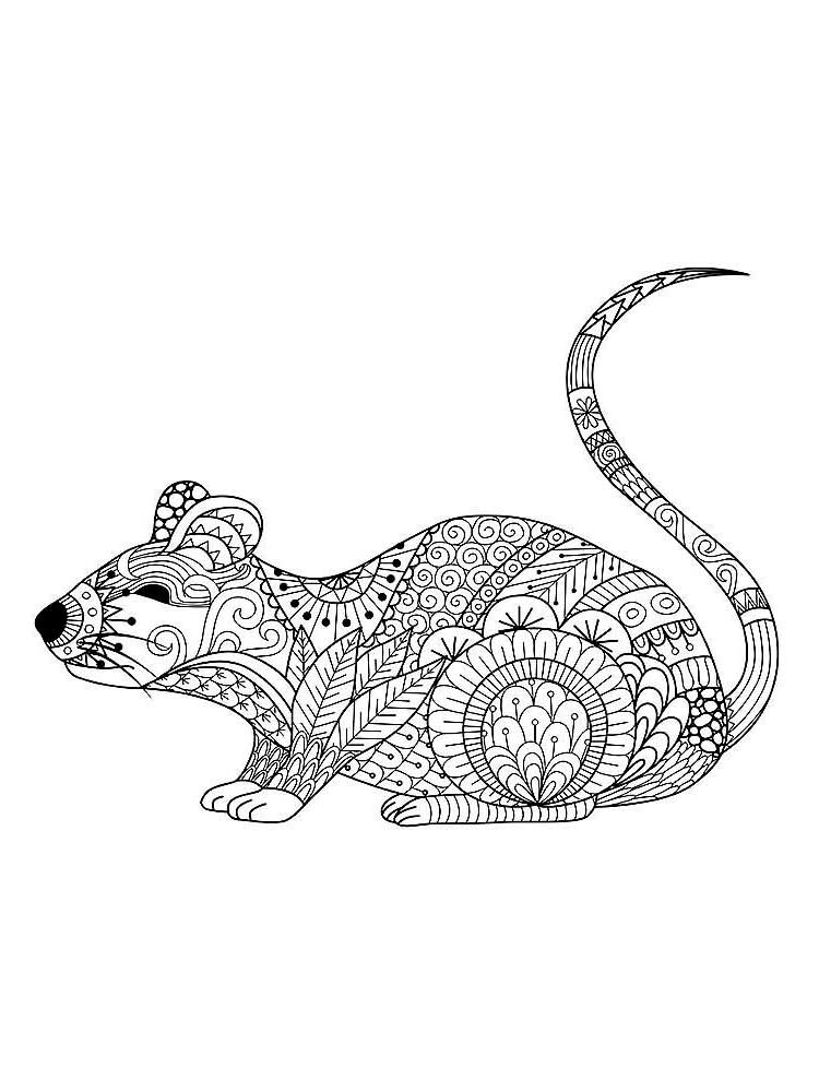 mouse colouring free mouse coloring pages for adults printable to mouse colouring 1 1