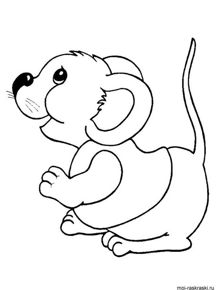 mouse picture for coloring mice coloring page coloring home picture for mouse coloring