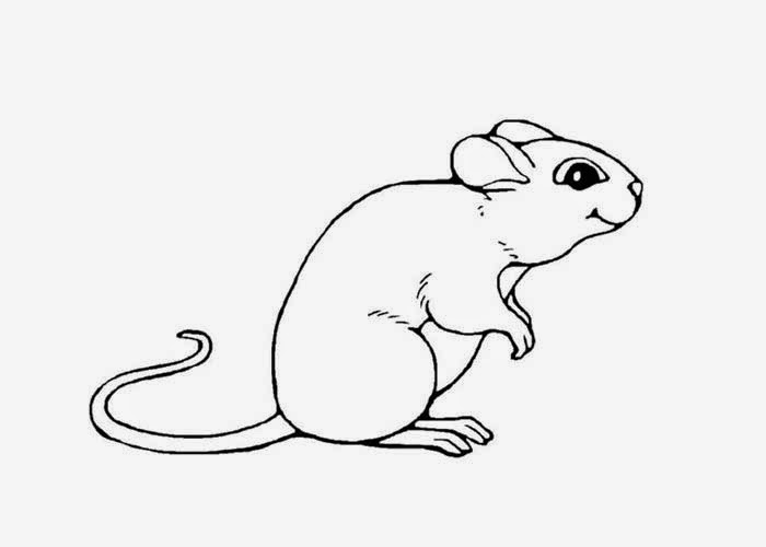 mouse picture for coloring mice coloring page free coloring pages and coloring picture coloring mouse for