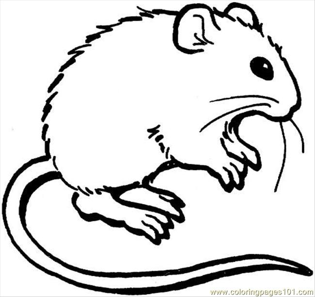 mouse picture for coloring mouse 3 coloring page coloring page free mouse coloring picture mouse coloring for