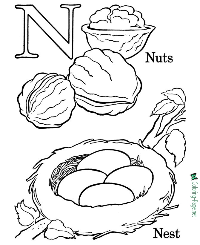 n is for coloring page alphabet coloring pages n is for nest page for coloring is n