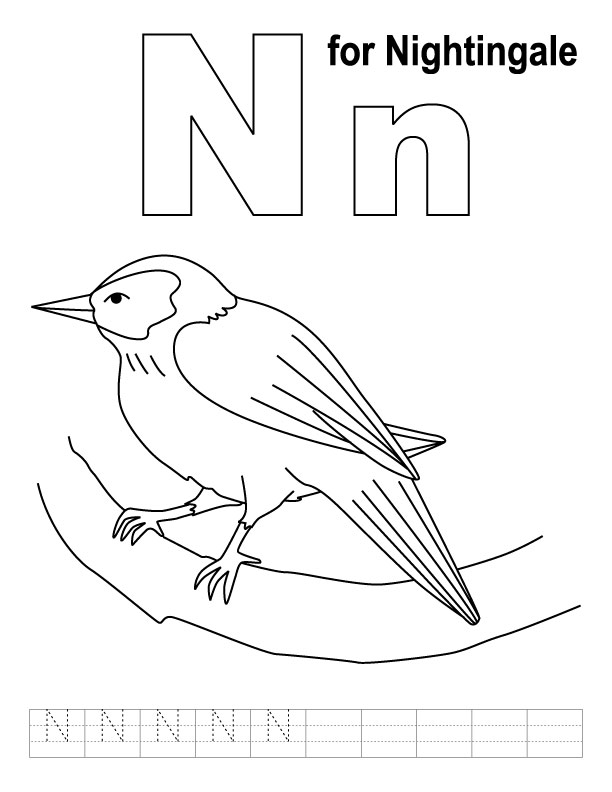 n is for coloring page n for nightingale coloring page with handwriting practice page for is n coloring