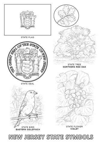 new jersey state tree new jersey state symbols coloring page with images tree jersey new state