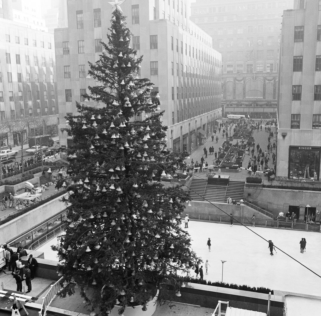 new jersey state tree o canada fifty years ago rockefeller center hosts a state jersey tree new