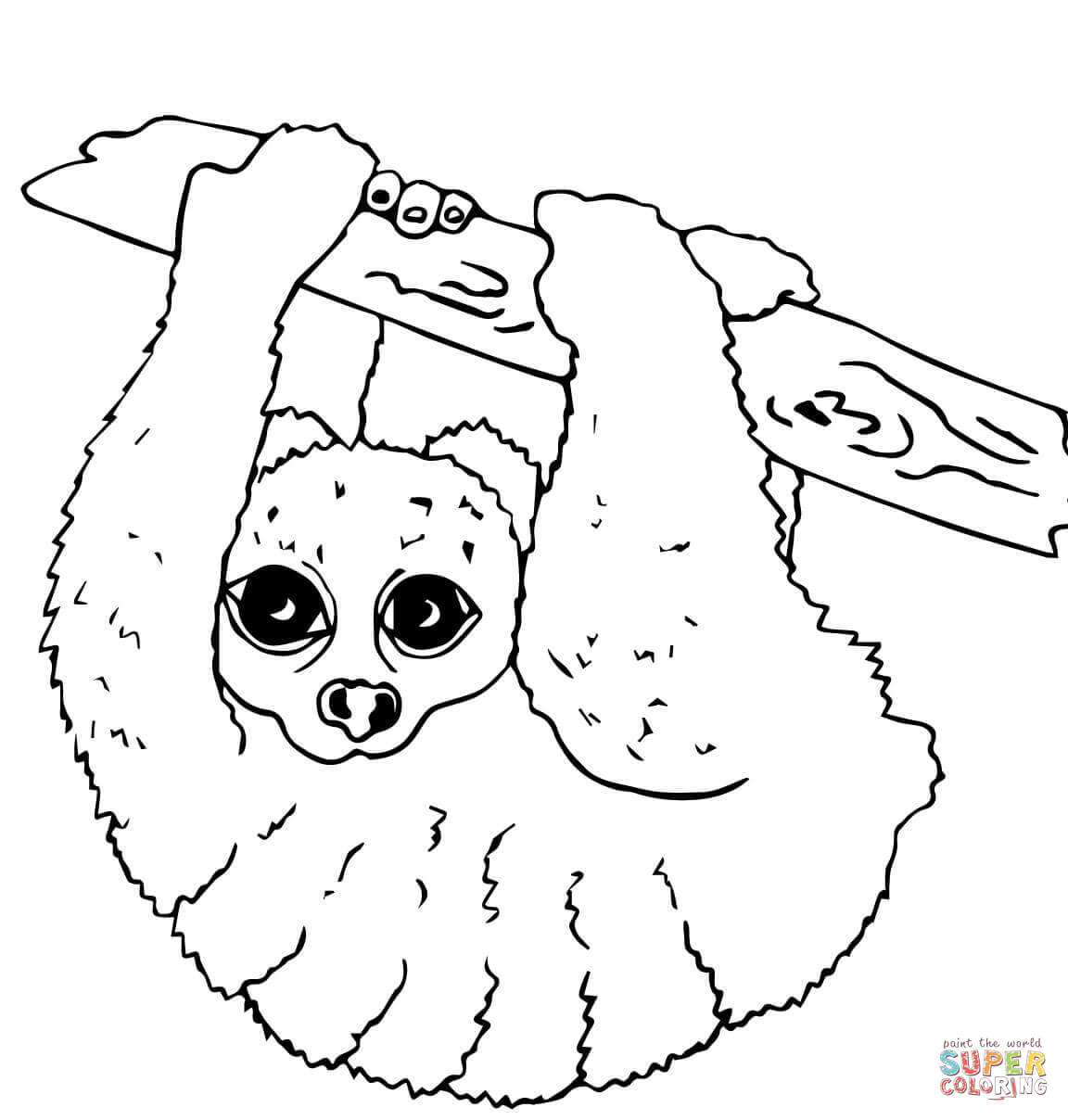 nocturnal animals coloring pages free coloring pages of nocturnal animals coloring page blog pages animals nocturnal coloring