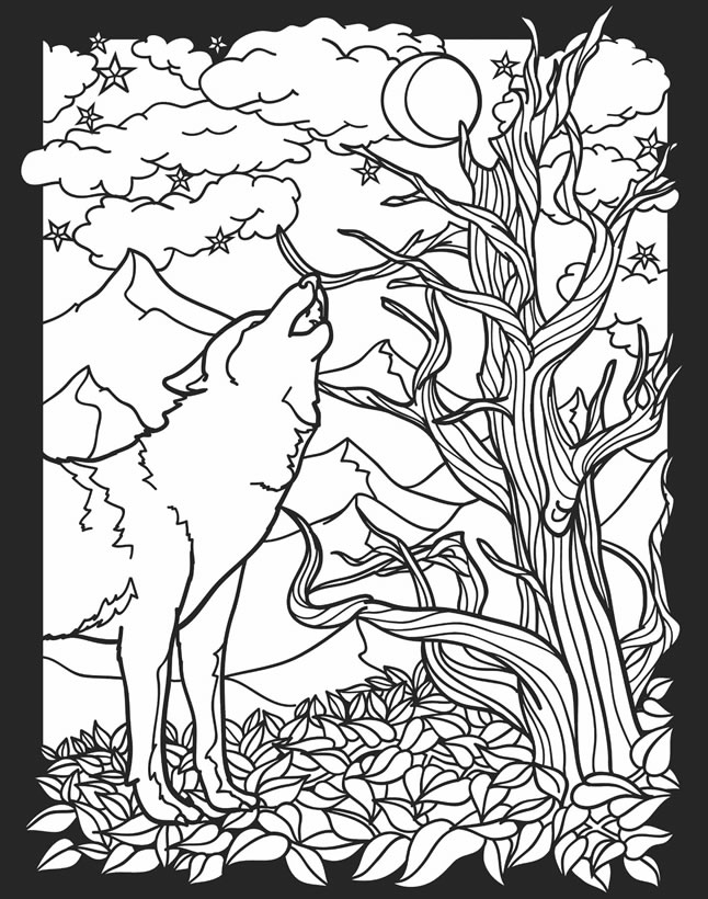 nocturnal animals coloring pages pictures of nocturnal animals coloring home animals nocturnal pages coloring
