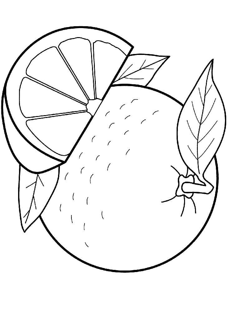 orange fruit coloring fruits coloring pages free coloring pages printable for orange fruit coloring