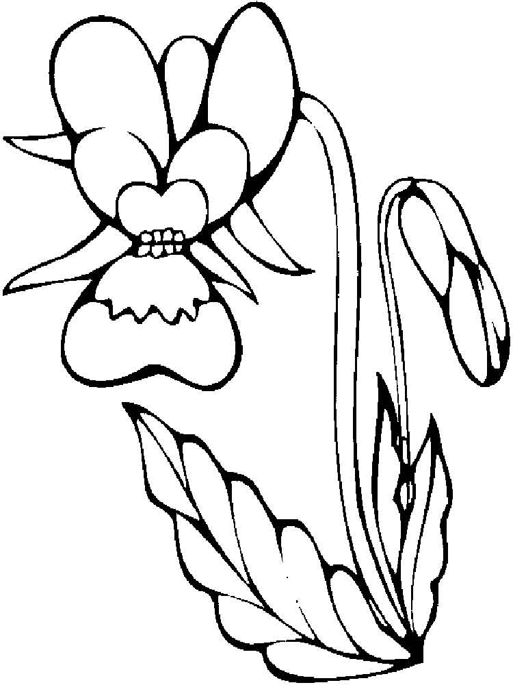 orchid coloring pages orchid coloring pages to download and print for free coloring orchid pages