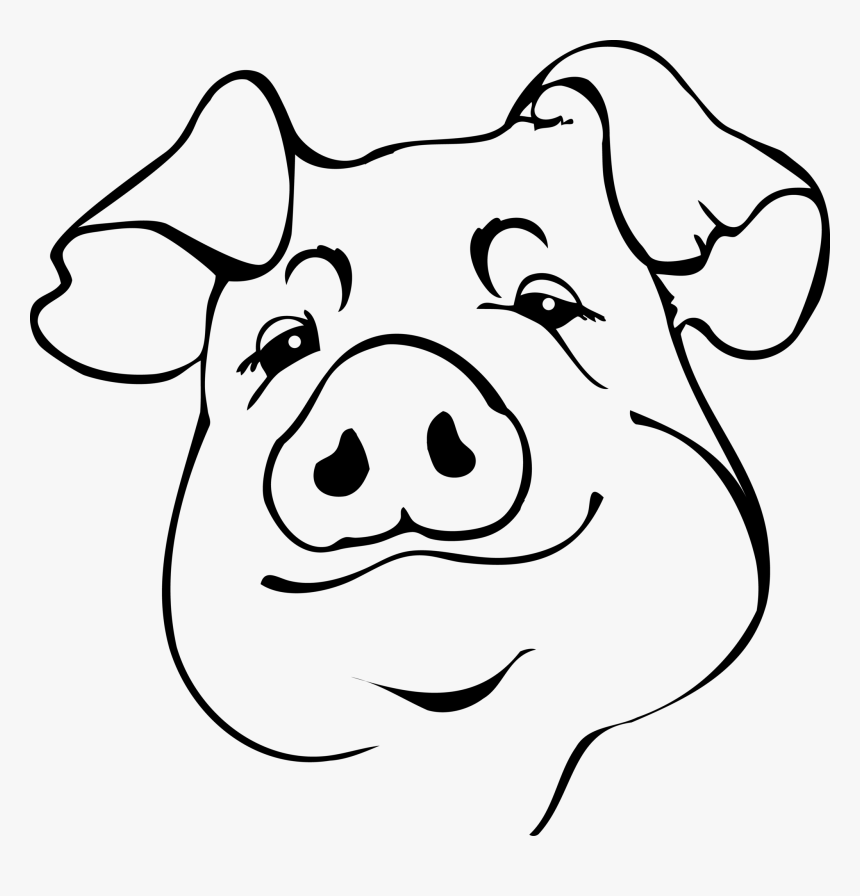 outline of a pig outline of a pig free download on clipartmag outline pig a of