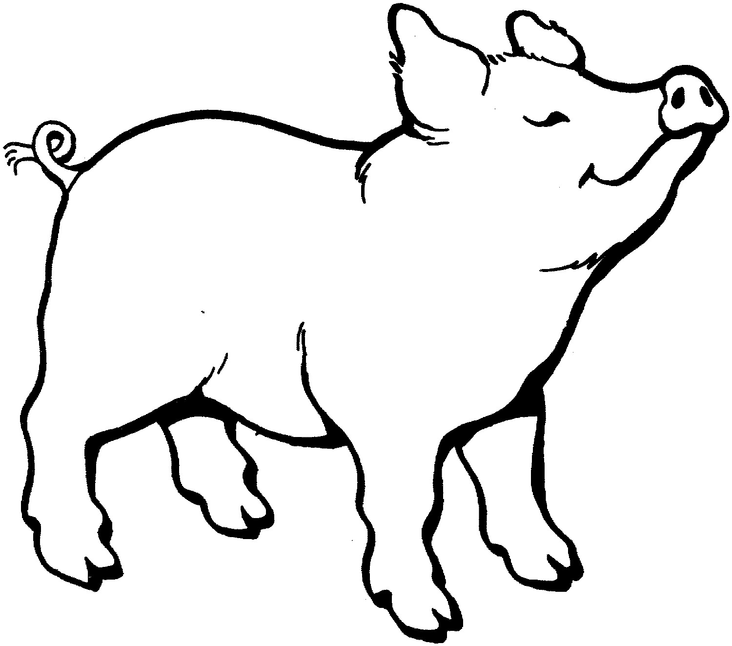 outline of a pig pig outline clipart free stock photo public domain pictures pig a of outline